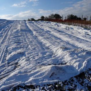 """כישורית - חקלאות בשלג (12) • <a style=""""font-size:0.8em;"""" href=""""http://www.flickr.com/photos/143413673@N05/29588446772/"""" target=""""_blank"""">View on Flickr</a>"""