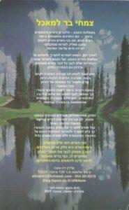 book-likut-2